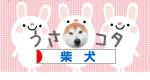 にほんブログ村ランキングバナー